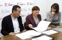 El PSOE pedirá en el Congreso infraestructuras para Elche