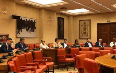 Comisión de Economía : comparecencia presidente de la CNMV